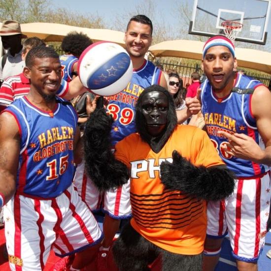 36 – Phoenix Suns Gorilla with Harlem Globetrotters 8300